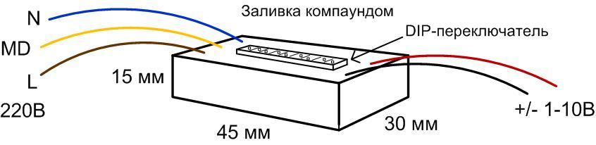k2304.jpg